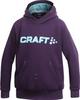 Толстовка Craft Flex Hood детская purple - 1