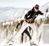 Лыжные Брюки Stoneham Soft shell, унисекс - 1