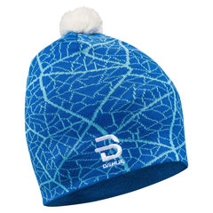 Bjorn Daehlie Hat Mixzone шапка синяя