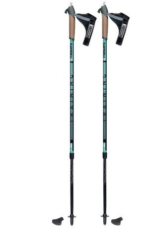 Masters Training палки для скандинавской ходьбы